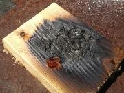 burnedPieceOfWood